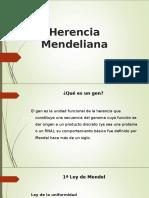 herenciamendeliana