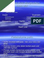 Katabolisme PURIN - Dr.haerrudin