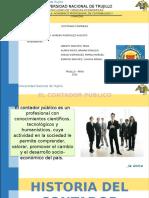 La Profesión Del Contador Público en El Perú