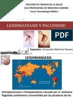 Leishmaniasis y Paludismo