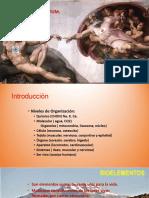 CELULA , MEMBRANA Y TRANSPORTE.pdf