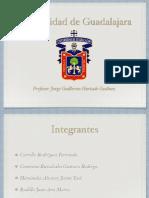 El Renacimiento PDF