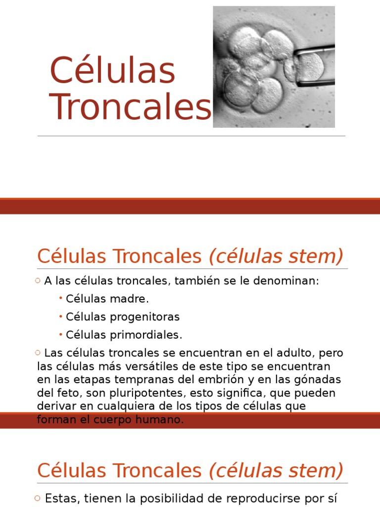 Células Troncales