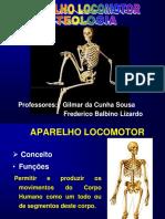 Aula 2 Osteologia Generalidades Gilmar Fred [Reparado]