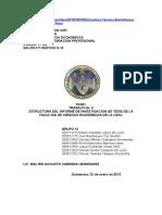 201879576 Estructura Tecnica Del Informe de Investigacion de Tesis