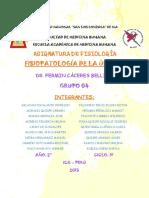 SEMINARIO2_ULCERA