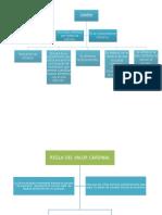 Mapas Conseptuales de Los Principios de Conteo y Las Necesidades de Aprendizaje