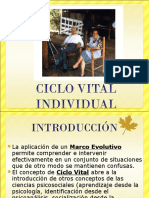 Ciclo Vital Individual Modificado (2)