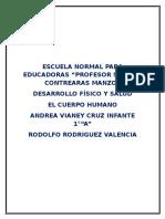 Informe Del Cuerpo Humano