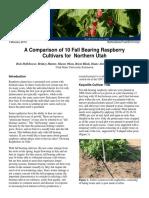 Horticulture Fruit 2013n-01pr