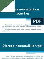 Infectii Cu Rotavirus La Vitei Si Purcei