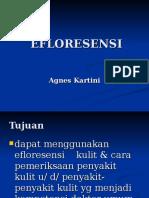3.efloresensi