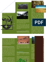 Land Biome Brochure.docx