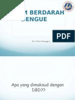 Penyuluhan DBD Pkk