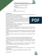 GUÍA DE PRÁCTICA CLÍNICA DE HERNIAS MODIFICADA ULTRA.docx