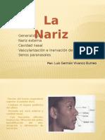 la narizz1)