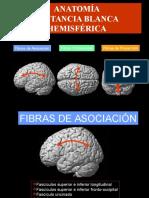 Anatomia de La Sustancia Blanca (Tractografía)