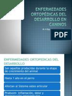 enfermedadesortopdicasdeldesarrollo2013-131117064006-phpapp01.ppt