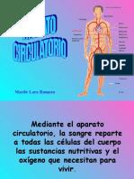 aparato-circulatorio.ppt