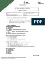 210- DERECHO ROMANO.pdf