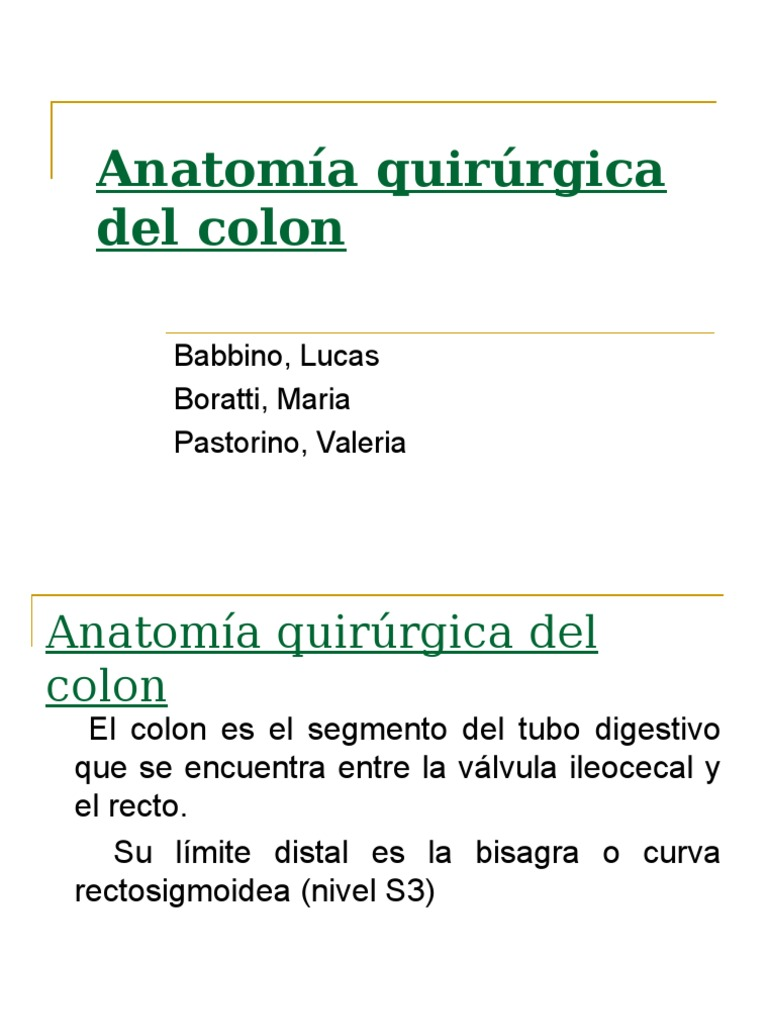 anatomaquirrgicadecolon