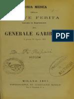 Storia Medica Della Ferita Di Garibaldi