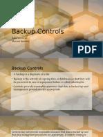 Backup Controls