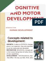 5. Sensory Development