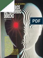 Cerebro - Los Misterios Del Hemiferio Derecho R-007 Nº002 - Año Cero - Vicufo2