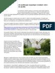 Recommandations de jardinage organique rendant votre épanouissement de jardin