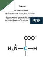 Bioscience Unit 2 Enzymes