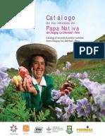 Catalogo de variedades de papa nativa de Chugay, La Libertad - Peru. Catalog of ancestral potato varieties from Chugay, La Libertad - Peru