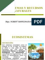 CLASE 5 Ecosistemas y RRNN