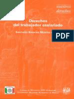 Santiago Barajas Montes de Oca-Derechos Del Trabajador Asalariado