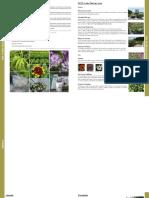 native plants.pdf