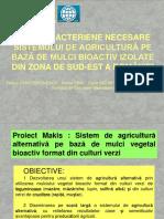 Bacterii Antagoniste Mulci Bioactiv