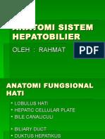 Anatomi Sistem Hepatobilier