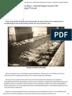 INEDIT. Pogromul de La Jilava – Adevăru..