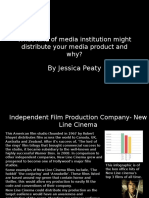 What kind of media institution distribute your media product and why?