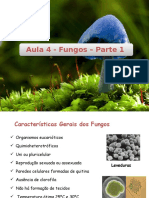 Aula 4 - Fungos Parte 1 - Patrícia Souza - Cópia