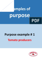 Examples of purpose
