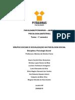 Grupos Sociais e Socialização