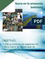 Flora y fauna en la Amazonía.ppt