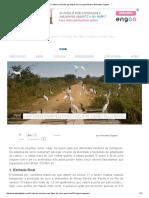 5 Roteiros Incríveis Para Fazer de Carro Pelo Brasil _ Nômades Digitais