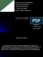 PRESENTACIÒN DE HALOGENUROS DE ALQUILO.ppt