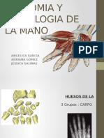 Anatomia y Semiologia de La Mano (cirugia plastica)