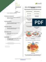 Aula1 Biologia Visao Geral Envoltorios Celulares e Citoplasma v04