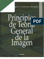 Principios de Teoria General de La Imagen