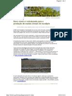 Newsletter - Novo viveiro é estruturado para mudas clonais de eucalipto