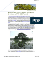 Newsletter - Sequestro de carbono no Sesc Pantanal